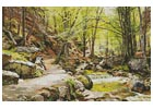 A Forest near Ilsenburg in the Harz Germany - Cross Stitch Chart