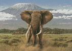 African Giants - Cross Stitch Chart