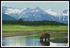 Alaska - Cross Stitch Chart