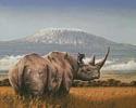 Amboseli - Cross Stitch Chart