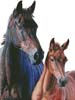 A Mother's Love - Cross Stitch Chart