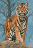 Amur Tiger Guard - Cross Stitch Chart