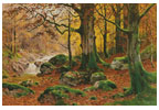 Autumnal Forest - (Facebook Group) Cross Stitch Chart