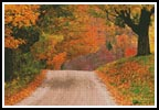 Autumn Road - Cross Stitch Chart