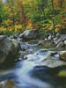 Autumn Stream - Cross Stitch Chart