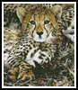 Baby Cheetah - Cross Stitch Chart