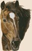 Bay Horse - Cross Stitch Chart