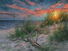 Beach Life - Cross Stitch Chart