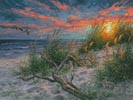Beach Life (Large) - Cross Stitch Chart