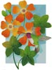 Beija Flor Orange - Cross Stitch Chart