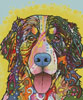 Bernese Mountain Dog - Cross Stitch Chart