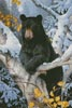 Black Bear Painting - Cross Stitch Chart