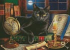 Black Cat by Candlelight (Large) - Cross Stitch Chart