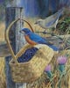 Blue Bandit - Cross Stitch Chart