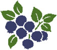 Blueberries - Cross Stitch Chart