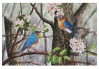 Bluebirds - Cross Stitch Chart