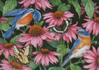 Bluebirds and Coneflowers - Cross Stitch Chart