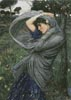 Boreas - Cross Stitch Chart