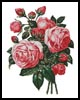 Bouquet of Pink Roses - Cross Stitch Chart