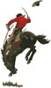 Bucking Bronco - Cross Stitch Chart