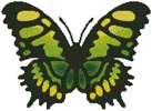 Butterfly Design 1 - Cross Stitch Chart