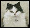 Cat 4 - Cross Stitch Chart