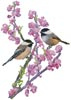 Chickadees and Redbud - Cross Stitch Chart