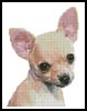 Chihuahua - Cross Stitch Chart