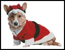 Christmas Pup - Cross Stitch Chart