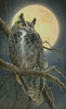 Close Encounter - Cross Stitch Chart