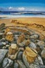 Coastal Landscape - Cross Stitch Chart