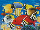 Coral Fish - Cross Stitch Chart