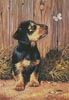 Dachshund Puppy - Cross Stitch Chart