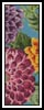 Dahlias Bookmark - Cross Stitch Chart