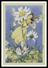 Daisy Fairy - Cross Stitch Chart