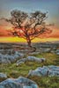Dales Dusk - Cross Stitch Chart