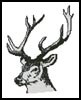 Deer Head - Cross Stitch Chart