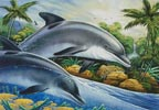 Dolphin Island - Cross Stitch Chart