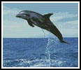 Dolphin Leap - Cross Stitch Chart