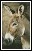 Donkey - Cross Stitch Chart