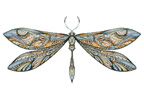 Dragonfly - Cross Stitch Chart