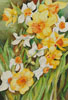 Early Spring Flowers - Cross Stitch Chart
