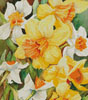 Early Spring Flowers (Crop) - Cross Stitch Chart