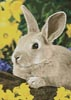 Easter Bunny - Cross Stitch Chart