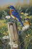 Eastern Beauties - Cross Stitch Chart