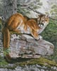 Eastern Cougar - Cross Stitch Chart
