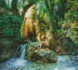Forest Sanctuary - Cross Stitch Chart