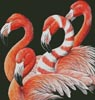 Four Flamingos - Cross Stitch Chart
