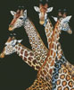 Four Giraffes - Cross Stitch Chart