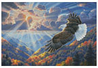 Freedom- Cross Stitch Chart